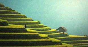 رحلة سياحية الي الصين