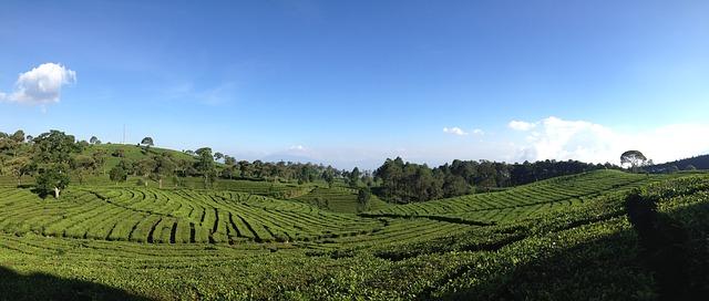 أشياء لابد أن تفعلها في باندونج, إندونيسيا