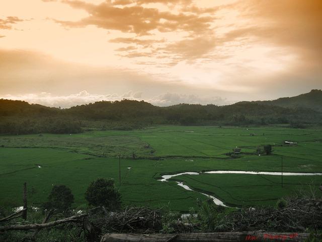 دليل السفر إلى كاليمنتان (بورنيو) - اندونيسيا