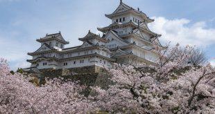 إجراءات الإقامة والدخول للدراسة في اليابان