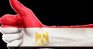 طرق منح الجنسية المصرية للأجانب